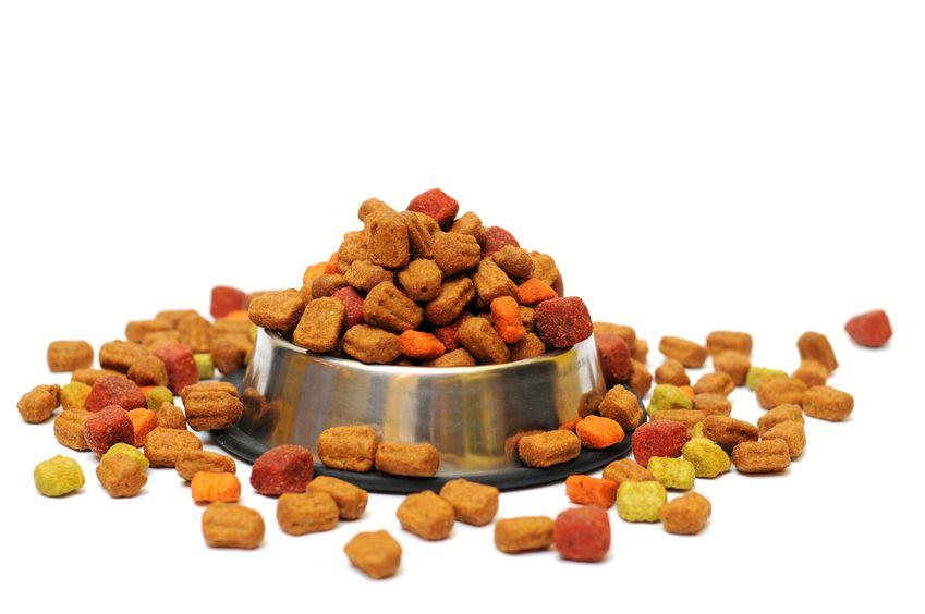 20818565 - pet food in a silver bowl on a white background