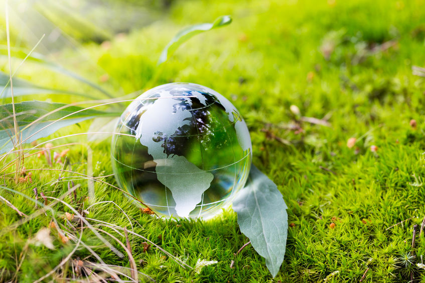 Crystal globe resting on moss in a forest.